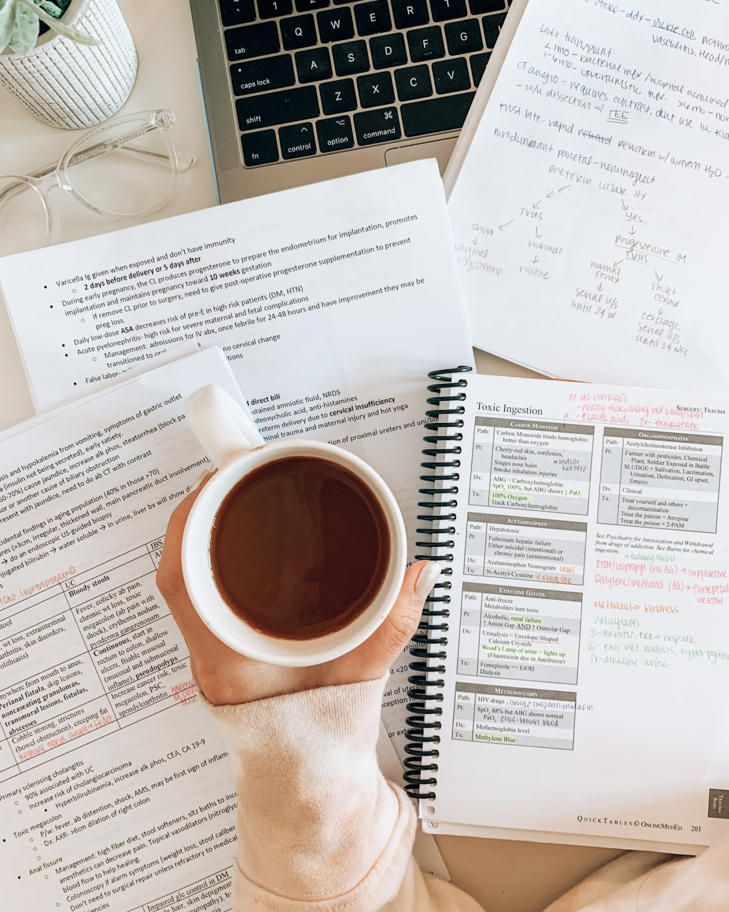 How I Scored in the 95th+ Percentile on Step 2 CK- Study Schedule