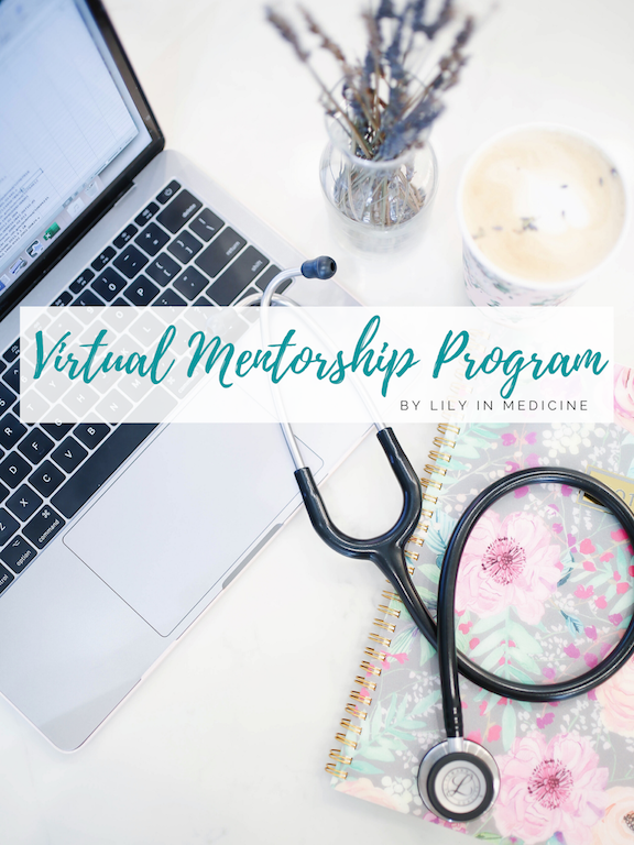 Successful First Round of the Virtual Mentorship Program!